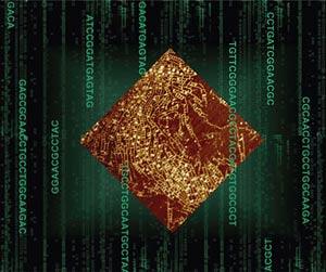 Европейские кибербанды атакуют мелкие американские фирмы
