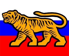 В Приморье с четвертого раза зарегистрировали движение ТИГР