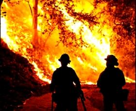 Пожары в Калифорнии обуздать не удается