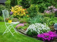 Один раз в год сады цветут: подготовка загородного участка к дачному сезону