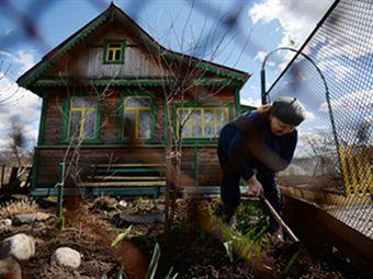 Дачникам придется выбрать, кто они - садоводы или огородники
