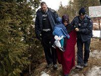 Смещение на Север: наплыв мигрантов из США в Канаду бьет рекорды