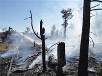 Пожары в Сибири подобрались к губернаторам