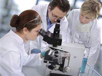 В Томске испытают новый препарат от атеросклероза