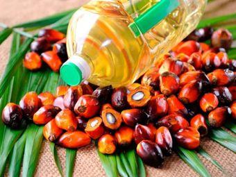 Компания Nestle не хочет раскрывать долю пальмового масла