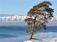 Жители Иркутской области выступили против ГЭС в Монголии из-за рисков для Байкала