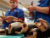 Белоруссия нарастила поставки рыбы в Россию в 15 раз