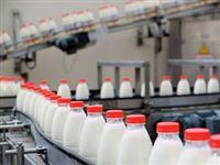 Красноярские ученые разработали препарат, повышающий пищевую ценность молока