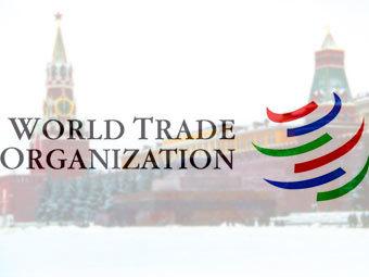 Правительство ослушалось Медведева в вопросе о вступлении в ВТО