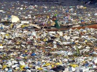 Горы пластикового мусора, дрейфующие в мировом океане, грозят гормональными сбоями человеку