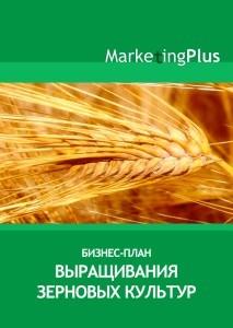 Пример бизнес плана выращивание зерновых культур 51
