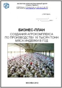 Бизнесплан фермерского хозяйства по выращиванию индейки